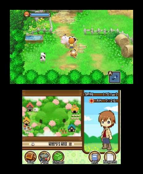 harvest moon the tale of two towns nds
