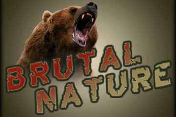 Brutal Nature