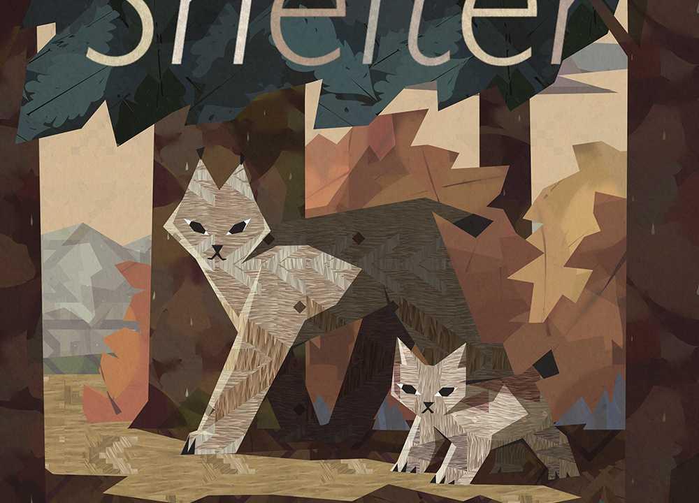 Shelter Generations