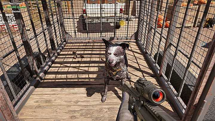 Starting tips for Far Cry 5