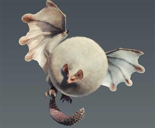 【Monster Hunter World】魔物弱點