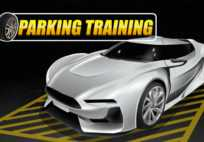 Parking Training
