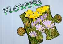 Jigsaw Puzzle: Flowers