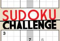 Sudoku Challenge