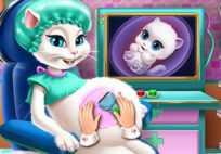 Kitty Pregnant Checkup