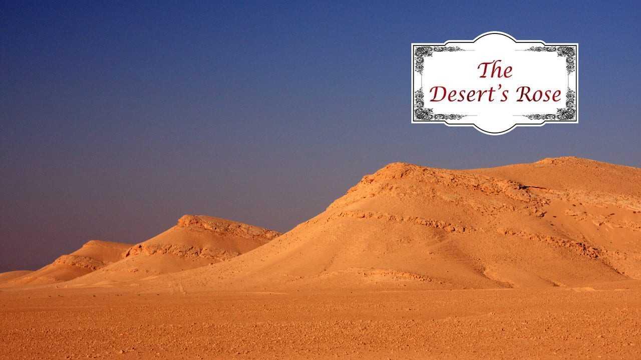 The Desert's Rose