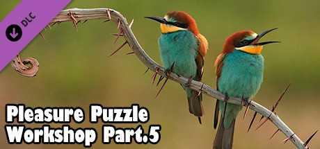 Pleasure Puzzle:Workshop - Part 5