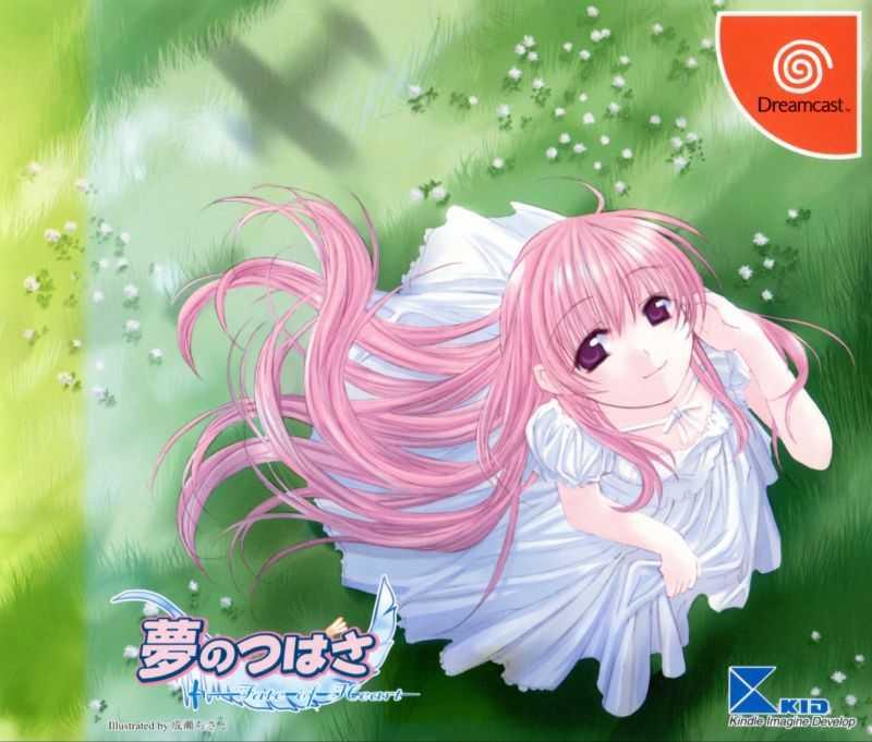 Yume no Tsubasa: Fate of Heart (Genteiban)