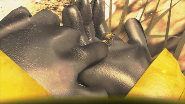 Hive Wars