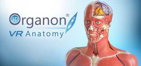 3D Organon VR Anatomy   Enterprise Edition