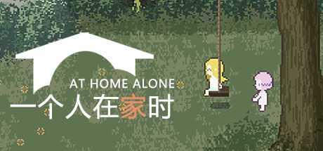 At Home Alone II