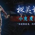 探灵笔记-怨灵小皮·皮炎平(附送29999灵币)