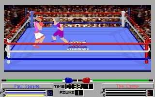 4D Sports Boxing